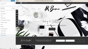 customize theme WordPress