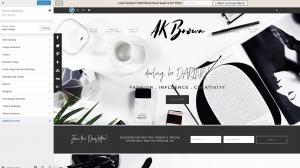 customize theme WordPress